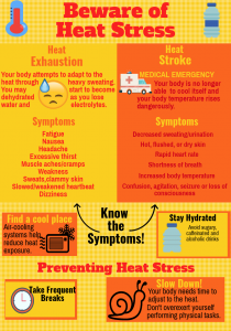 Heat Stress vs Heat Stroke